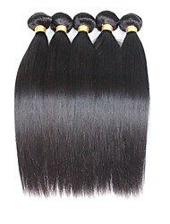 Tejidos Humanos Cabello Cabello Malayo Recto 12 meses 5 Piezas los tejidos de pelo
