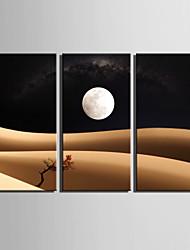 Landschaft Leinwand drucken Drei Paneele Fertig zum Aufhängen , Vertikal