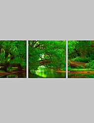 E-HOME® Stretched Canvas Art River in The Green Forest Decorative Painting Set of 3