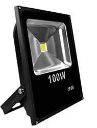 100w теплый / холодный белый цвет черный ультратонкий ip65 Наружная Светодиодный прожектор Светодиодная лампа (AC85-265V)