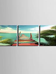 Пейзаж Холст для печати 3 панели Готовы повесить , Квадратный