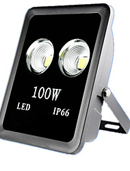 100W IP66 COB Led Floodlight Garden Landscape Led Flood Spotlight(AC85-265V)
