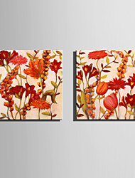 E-HOME® Stretched Canvas Art Red Flowers Decoration Painting  Set of 2