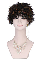 Kinky Curly Synthetic Wigs for Black Brown Women Afro Wig Curly Synthetic Wigs Cheap Hair for Women Sale