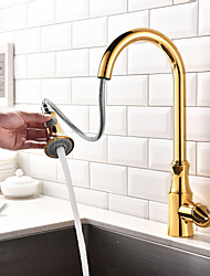 Contemporary Ti-PVD  One Hole Single Handle Pull-down Kitchen Faucet