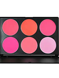 Blush Powder Coloured gloss / Long Lasting / Fast Dry Face 6 Color