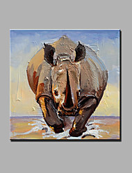 Hand-Painted Abstract / Animal 100% Hang-Painted Oil Painting,Modern One Panel Canvas Oil Painting For Home Decoration