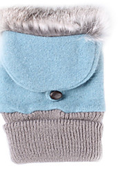 Cute Rabbit Wool Fabric Cover Gloves (Turkey Blue)