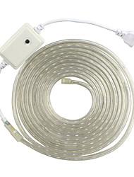 5m eu 220 VAC rgb wasserdicht Seil Licht für den Außenbereich 5050 Band Gartenlicht Baum Lichter Weihnachtsbeleuchtung RGB-Controller
