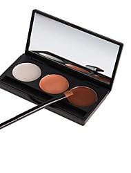 3 Concealer/Contour Dry / Matte Powder Concealer Face