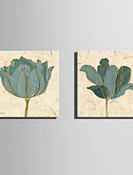 Холст Set Цветочные мотивы/ботанический Европейский стиль,2 панели Холст Квадратная Печать Искусство Декор стены For Украшение дома