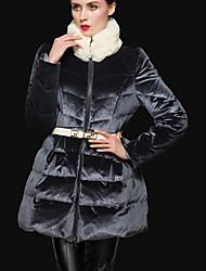 Feminino Padrão Casaco Capa,Simples Sólido Casual-Seda Penas de Pato Branco Manga Longa Colarinho Chinês Cinza