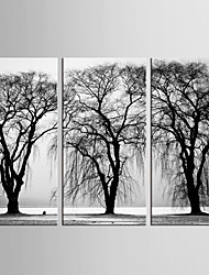 Canvas Set Landscape Floral/Botanical Modern Pastoral,Three Panels Canvas Vertical Print Wall Decor For Home Decoration