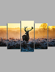 Canvas Set / Unframed Canvas Print Animal Deer ModernFive Panels Canvas Horizontal Print Wall Decor For Home Decoration