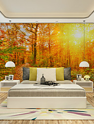 JAMMORY Art DecoWallpaper For Home Wall Covering Canvas Adhesive required Mural Yellow Forest Sun XL XXL XXXL