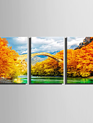 E-HOME Stretched Canvas Art Golden Stone Bridge Decoration Painting Set Of 3
