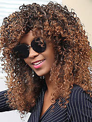 Colormix Long Side Bang Afro Curly Synthetic Wig