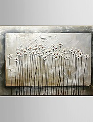 Stretchered Frame Ready to Hang Handpainted oil Paintings Flower Wall Art Home Decor