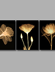 Stretched Canvas Print Three Panels Canvas Wall Decor Home Decoration Abstract Modern Flowers Black