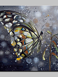 Hand-Painted Butterfly Animal Oil Painting On Canvas Modern Abstract Wall Art Pictures For Home Decoration Ready To Hang