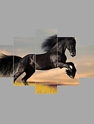 Print Running dark horse Painting Wall Art 5pcs/set Home Office Decor (No Frame)