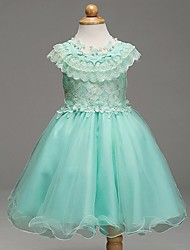 Ball Gown Knee-length Flower Girl Dress - Organza Jewel with Beading Flower(s) Lace