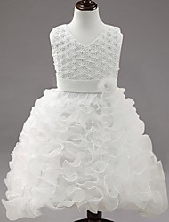 Ball Gown Knee-length Flower Girl Dress - Organza V-neck with Appliques Bow(s) Flower(s)