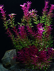 Décoration d'aquarium Plante d'eau Non toxique & Sans Goût Plastique Violet
