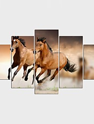 Stretched Canvas Print Still Life Animal ModernFive Panels Canvas Any Shape Print Wall Decor For Home Decoration