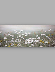 IARTS®Hand Painted Oil Painting Floral White Daisy Garden with Stretched Frame