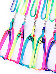 Pet Harness Traction Rope Rainbow