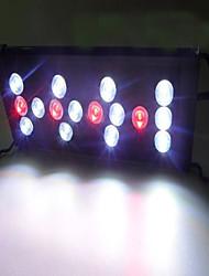 Aquarien LED - Beleuchtung Rot Energieeinsparung Einstellbar LED-Lampe 220V
