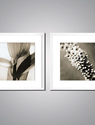 Framed Canvas Print Black and White Flower Print Art on Canvas Contemporary Artwork for Wall Decor Ready to Hang