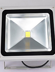 30W LED Integrated Modern/Contemporary Ambient Light Picture Lights Outdoor Lights
