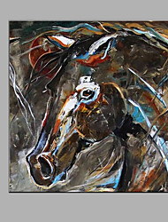Hand-Painted Abstract  The Horse Oil painting Ready To Hang Modern One Panels Canvas Oil Painting For Home Decoration
