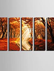 Paysage A fleurs/Botanique Moderne,Cinq Panneaux Toile Verticale Imprimer Art Décoration murale For Décoration d'intérieur