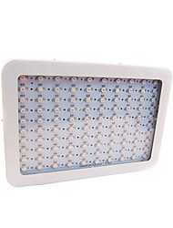 80W LED Grow Lights 100 High Power LED 2000-2300 lm Warm White UV (Blacklight) Red Blue AC85-265 V 1 pcs