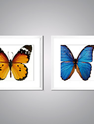 Framed Canvas Prints  Butterfly Picture Print on Canvas Contemporary Animal Wall Art for Decoration