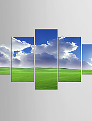 Photographic Print Landscape Style Modern,Five Panels Canvas Any Shape Print Wall Decor For Home Decoration
