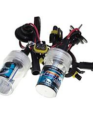 El coche del sencart ocultó las lámparas de los bulbos de las bombillas de xenón h1 / h3 / h7 / h8 / h9 / h11 / 9005 4300k 6000k 8000k