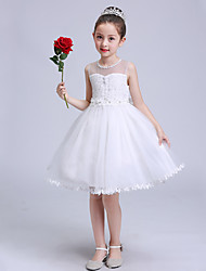 Ball Gown Short / Mini Flower Girl Dress - Lace Satin Tulle Jewel with Bow(s) Buttons Crystal Detailing Pearl Detailing Ruffles