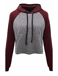 Women's Casual/Daily Hoodie Solid Color Block Round Neck Micro-elastic Cotton Long Sleeve Spring