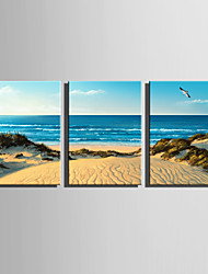E-HOME Stretched Canvas Art  Beach Scenery Decoration Painting Set Of 3