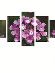Art Print Floral/Botanical Pastoral Five Panels Horizontal Print Wall Decor For Home Decoration