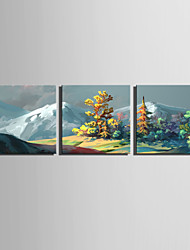 E-HOME Stretched Canvas Art The Scenery On The Snowy Mountain Decoration Painting Set Of 3