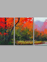 Hand-Painted Abstract Landscape Red Trees Modern 3 Panels Canvas Oil Painting For Home Decoration