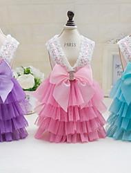 Autre Robe Vêtements pour Chien Mignon Décontracté / Quotidien Mariage Princesse Violet Bleu Rose
