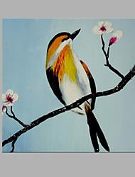 Pintados à mão Animal Abstracto 1 Painel Tela Estampado For Decoração para casa