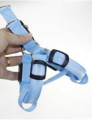 Colliers Portable Clignotant Ajustable Couleur Pleine Nylon