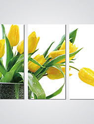 Stretched Canvas Print Yellow Tulip Flower Picture Modern Flower Artwork for Home Decoration